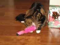 hey-ruby-i-like-your-christmas-toy-too-2013_12_29-18_40_53-utc
