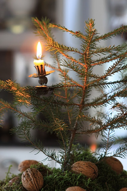 vintage Christmas tree with candle